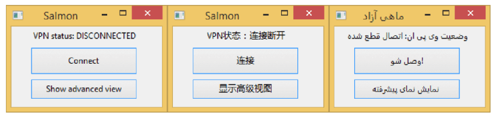 The Salmon client interface